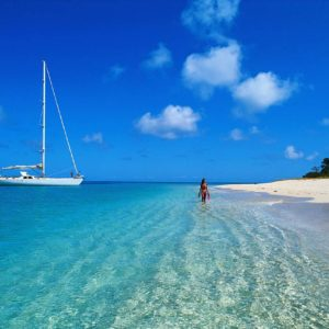 Terrestre Punta Cana