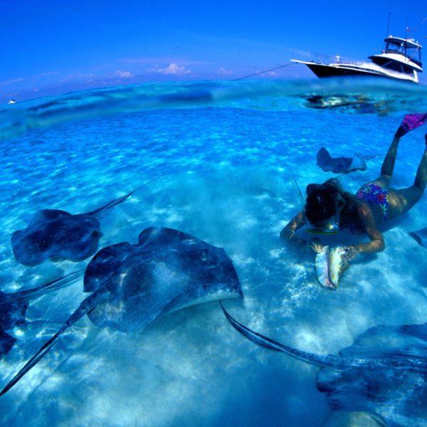 agencia-de-turismo-destinos-perfeitos-praia-aruba-turismo-internacional-15