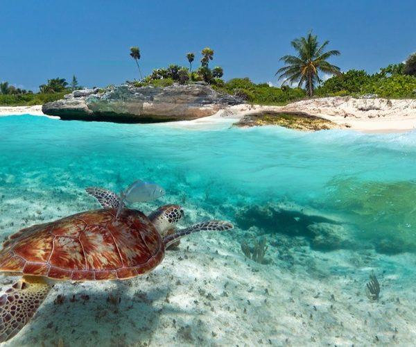 Hotel Dreams Sands Cancun – All Inclusive 1