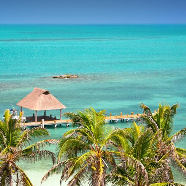 Isla Contoy, Mexico, bird eye view